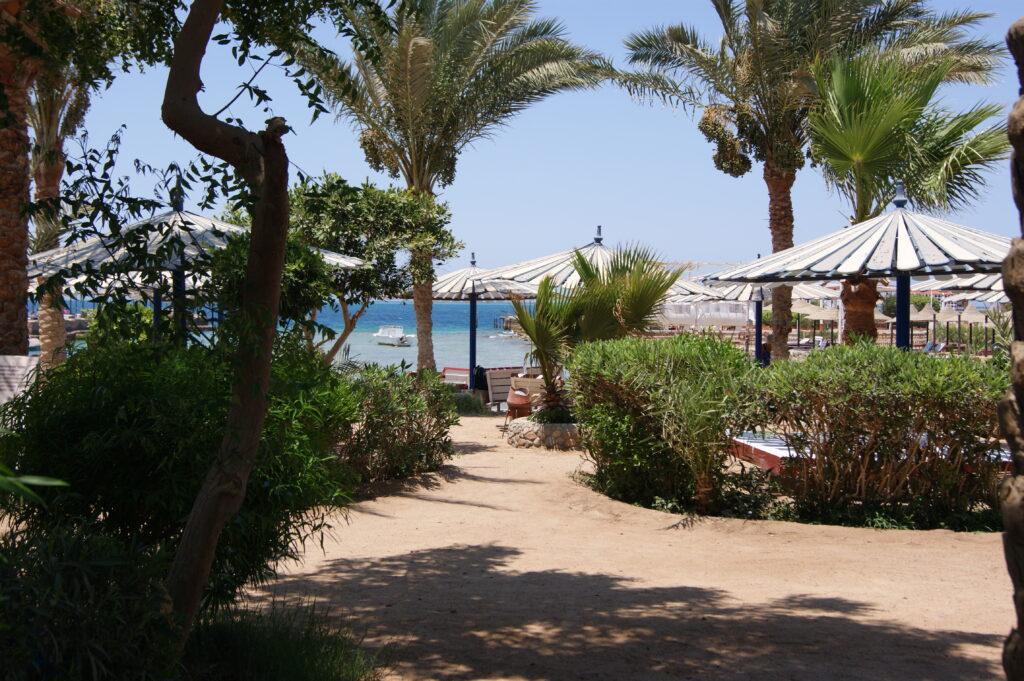 Badestrand i Hurghada